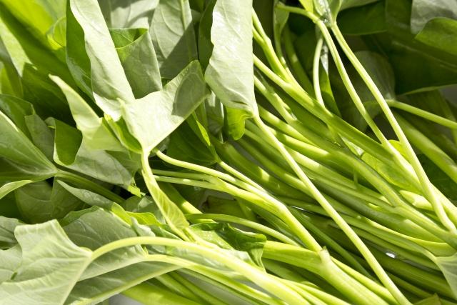 エンサイとは?どんな野菜?特徴やおすすめの食べ方・レシピをご紹介!