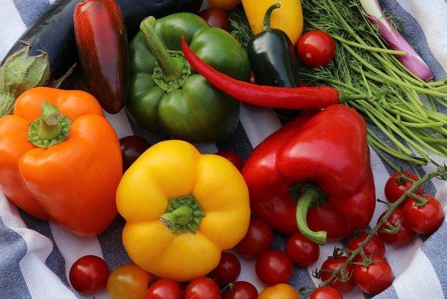 オーガニック野菜の定義は?有機野菜とはどう違う?違いを徹底解説!