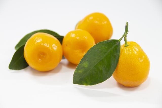 キンカン(金柑)の育て方!植え方や鉢植えでの手入れの仕方を紹介