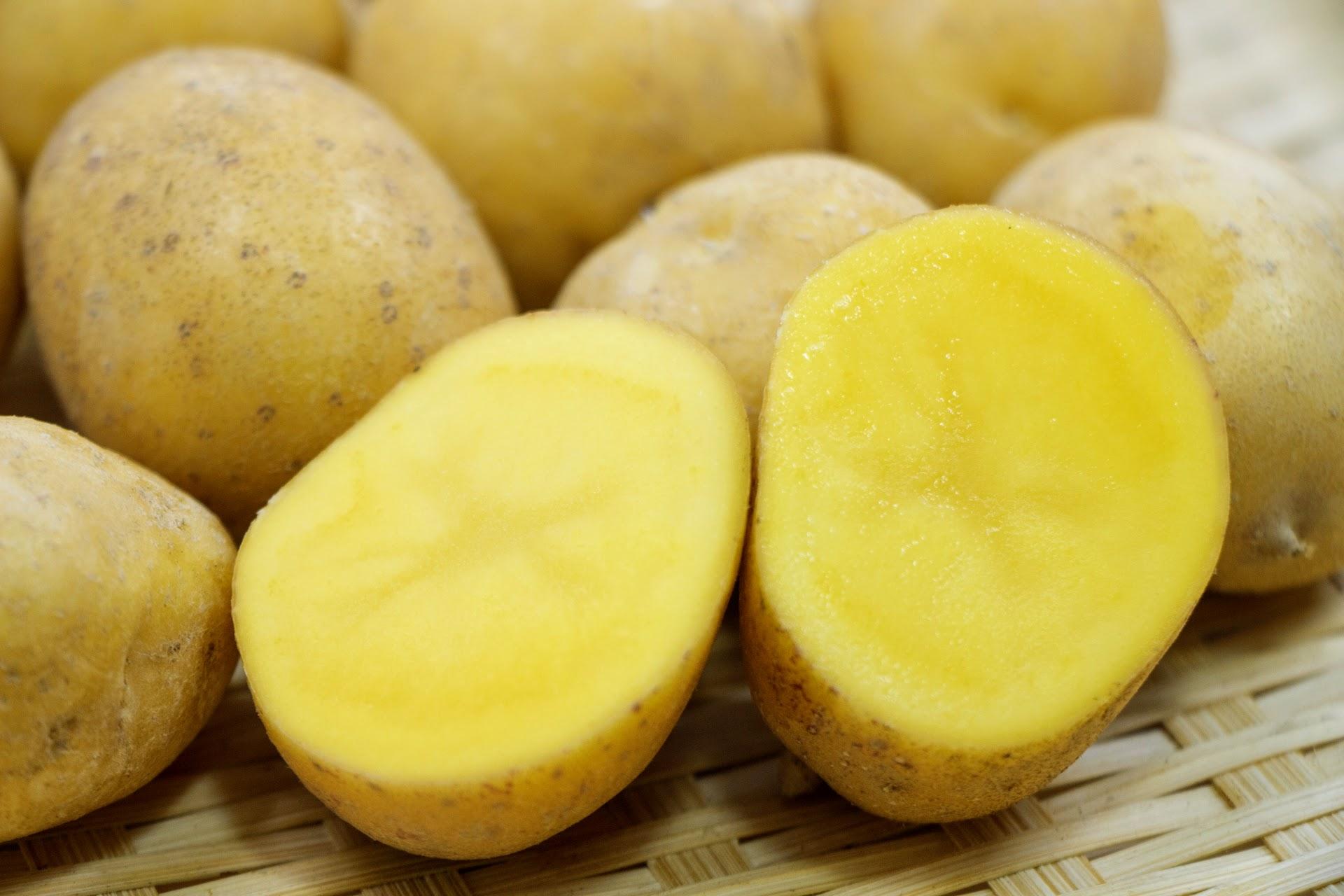インカのめざめってどんなジャガイモ?品種の特徴とおすすめの食べ方を紹介!