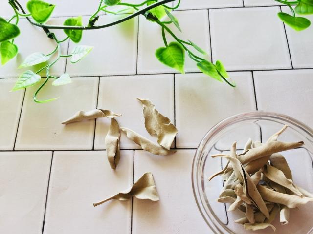 ホワイトセージの利用方法!天然石・部屋の浄化方法や焚き方を紹介!