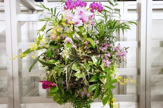 ハンギングバスケットとは?寄せ植えの時期・手順や花の選び方を紹介!