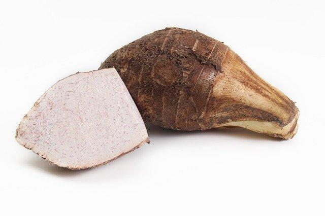 セレベスとは?普通の里芋との違いは?栽培方法や美味しい食べ方を紹介