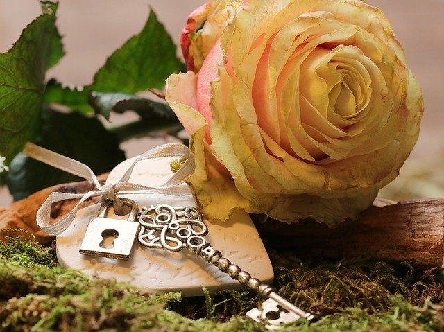 茶色の花・植物7選!おしゃれなチョコレート色など珍しい品種も紹介!