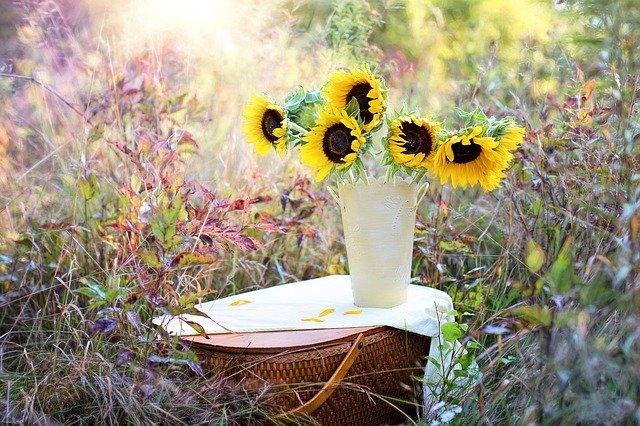 8月8日の誕生花とは?特徴・育て方や誕生石に記念日もご紹介!