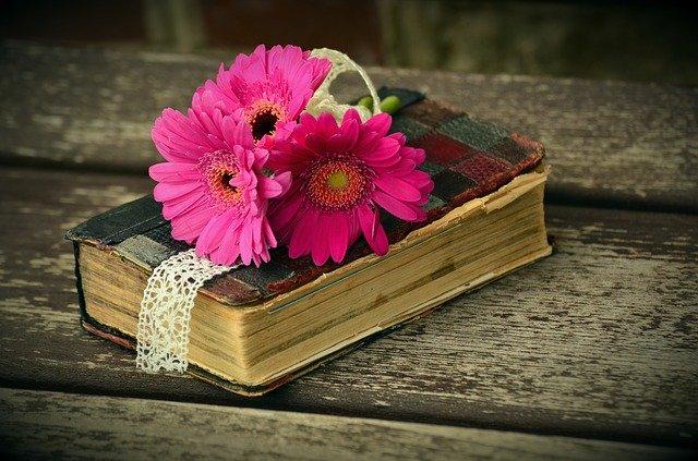8月19日の誕生花は?色ごとの花言葉や誕生石・記念日もご紹介!