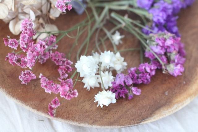8月26日の誕生花とは?特徴・育て方や誕生石に記念日もご紹介!