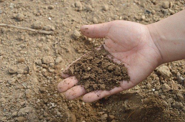 土壌改良材の人気商品10選!土づくりでのメリットや使用方法を解説!