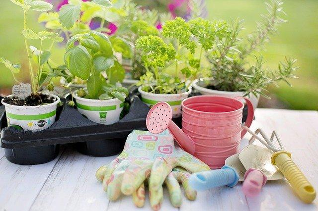 バーミキュライトとは?用土としての特徴・性質や効果的な使い方を解説!