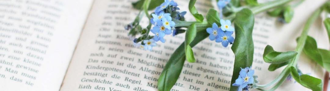 植物図鑑のイメージ