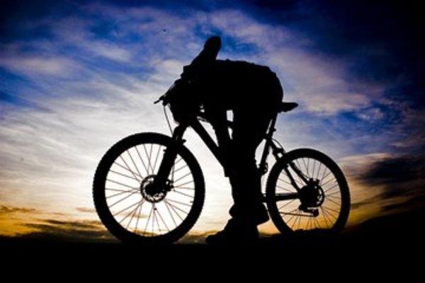 ドンキホーテ 折りたたみ 自転車