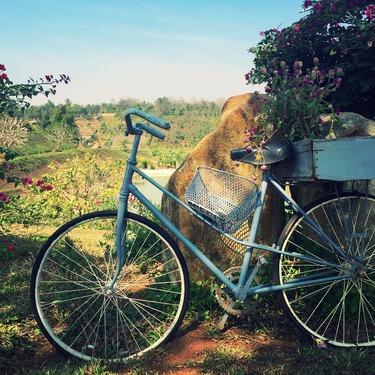 自転車のひとり旅におすすめの場所・ルートは?初心者向けに紹介!