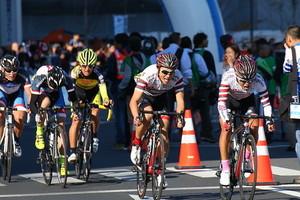 ロードバイクのレースへの出場方法を解説!初心者でも参加できるの?