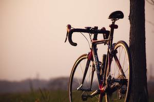 自転車の海外通販サイト一覧4選!簡単に購入できるおすすめサイトは?
