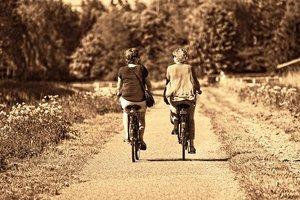 緑のヘルシーロードとは?サイクリングルートの概要や特徴を紹介!