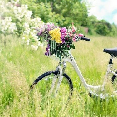 【女子中学生向け】初めての自転車選びのポイント5選!