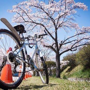 クロスバイク用スタンド6選!スタンドの種類・特徴や選ぶ時のコツも解説!