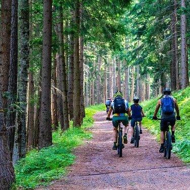 関東近郊で人気のマウンテンバイクコース10選!コース詳細や料金も紹介