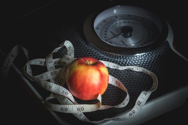 減らし 方 脂肪 内臓