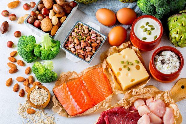 の 食べ物 タンパク質