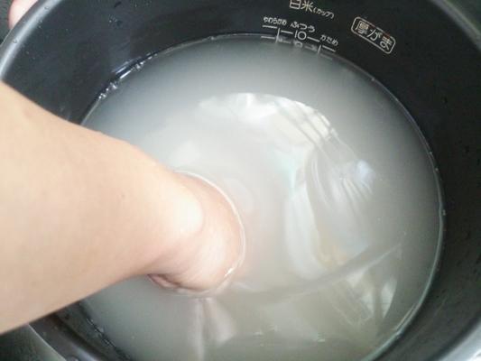 乳酸菌 米 の とぎ汁