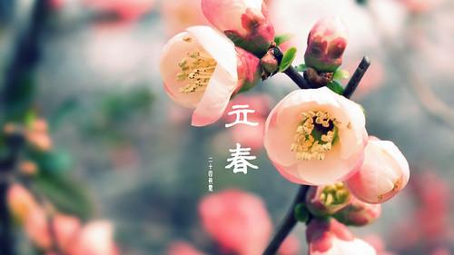 立春のイメージ