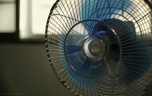 冷たく 風 する 扇風機 の を