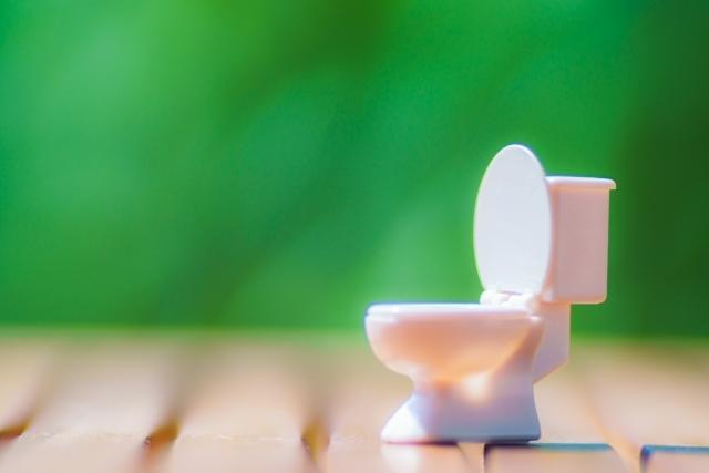 トイレの棚のDIY実例10選!おしゃれに用具を収納できるアイデアは?