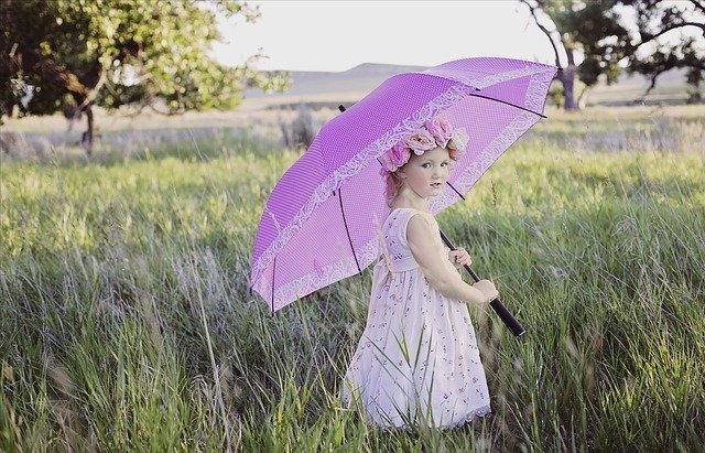 ニトリで買える傘6選!折りたたみ傘・長傘・日傘などで人気の商品は?