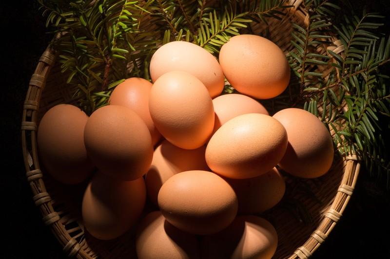 ゆで卵を「水から」作るコツ!沸騰したお湯で茹でる場合との違いは?