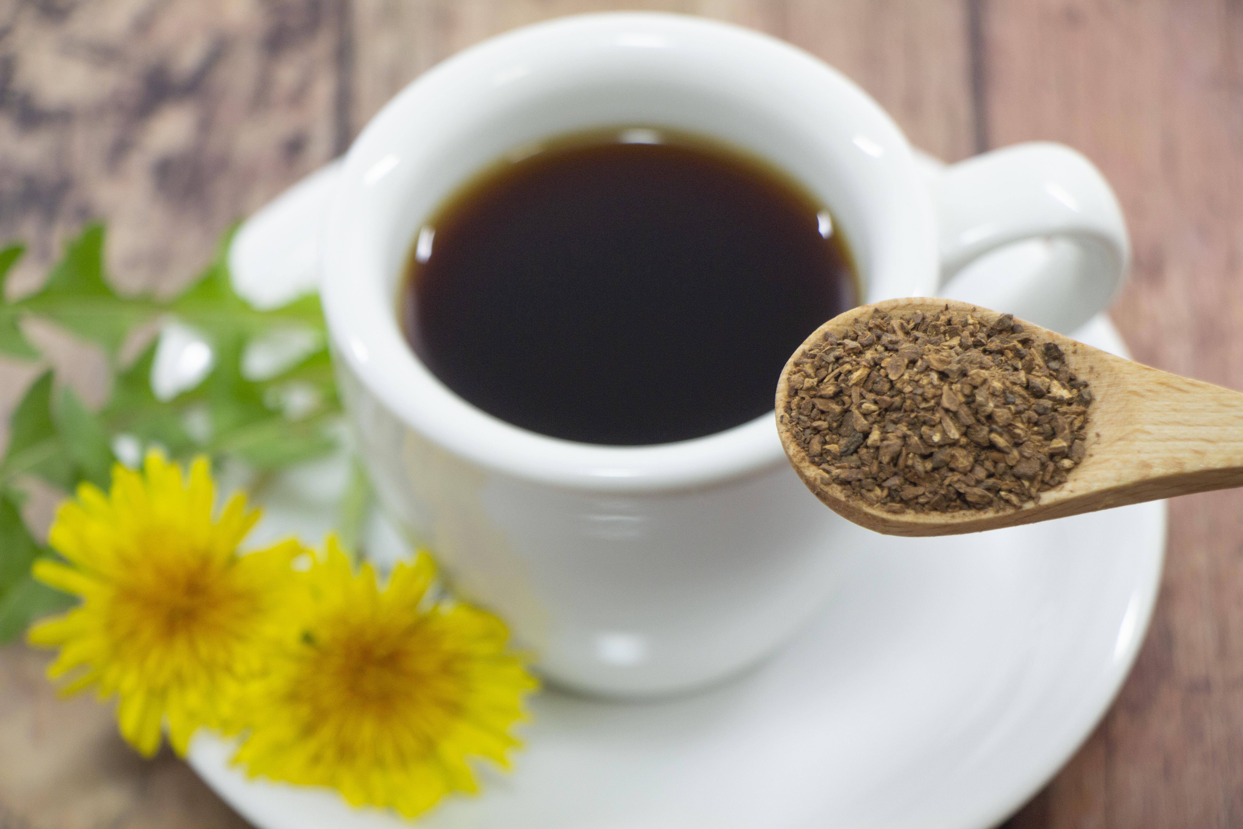 たんぽぽコーヒーの作り方!自宅で手作りするための材料・手順を紹介