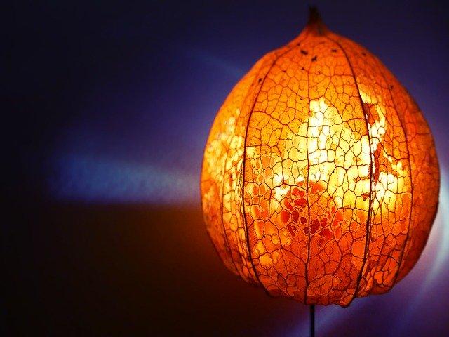 LEDランタン「たねほおずき」とは?人気の理由・特長や使い方を紹介