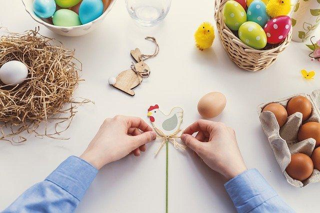アローカナとは?世界でも珍しい「幸せの青い卵」の特徴や効能を紹介!