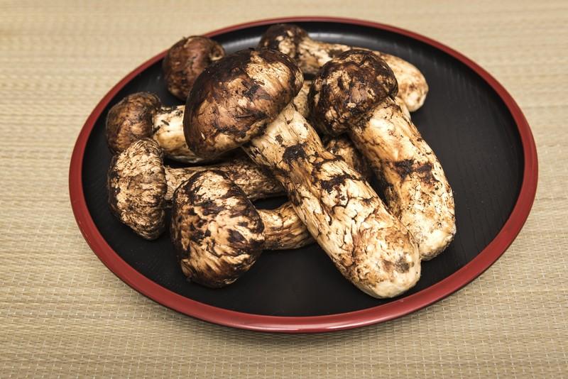 松茸の下処理方法と食べ方!炊き込みご飯など4品の作り方をご紹介!