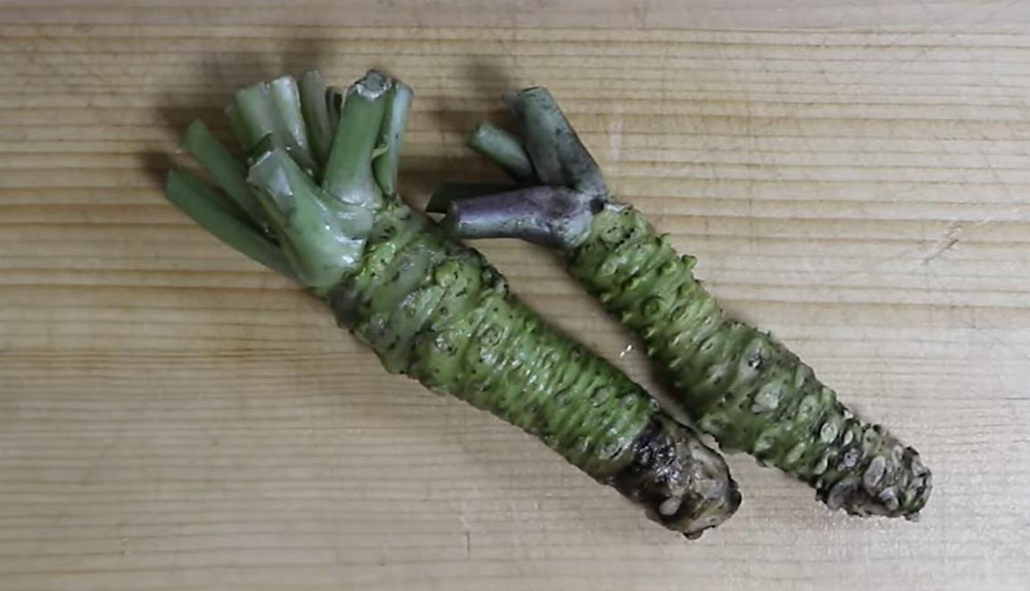 本ワサビの擦り方!おろす際のワサビの向き・2種類の味の違いも紹介!
