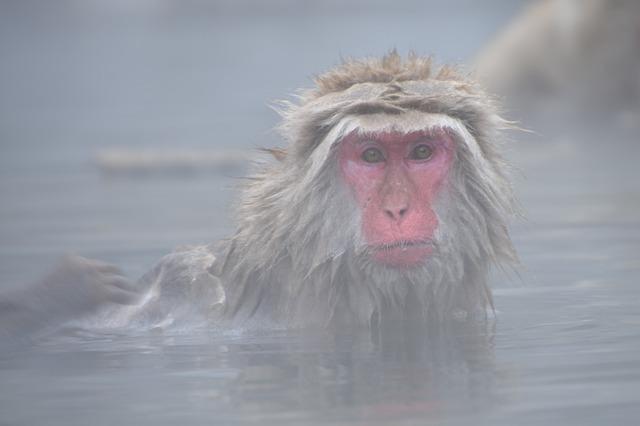 沖縄のおすすめ温泉・スパ15選!人気の高級ホテルや日帰り入浴施設も