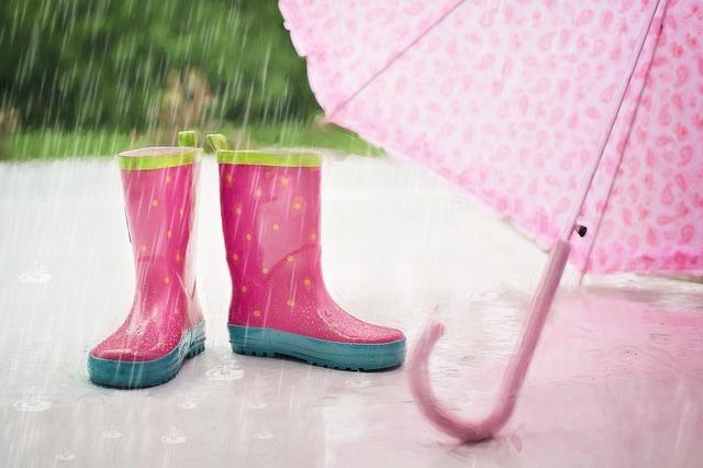 雨の日にもおすすめの東京観光スポット!子供連れにも人気の場所は?