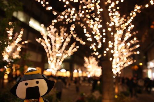 武雄神社でパワーをいただこう!人気の御朱印や見どころの大楠までご紹介!