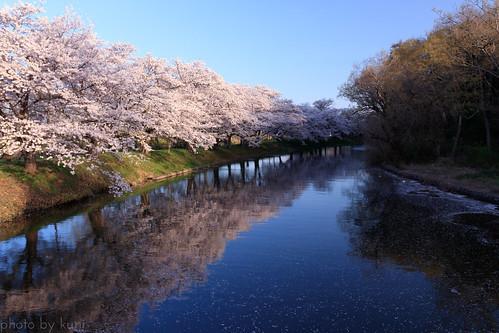 茨城のおすすめ観光スポット31選!人気グルメから穴場までご紹介♡