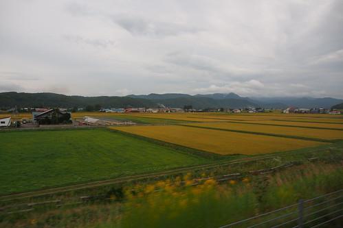 北海道9月のおすすめ旅行をご紹介!気温・服装と初秋の見どころは?