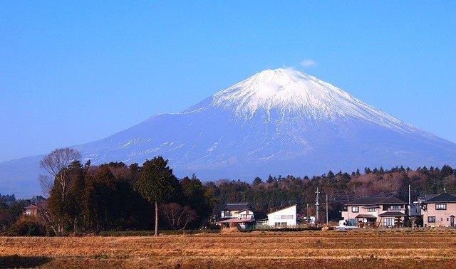 静岡のおすすめお土産31選!地元で人気のお菓子やグルメ・購入できるお店も紹介