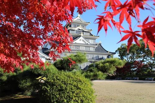 岡山県の「おかやまマラソン」が熱い!エントリー資格やコースなど詳細情報を解説