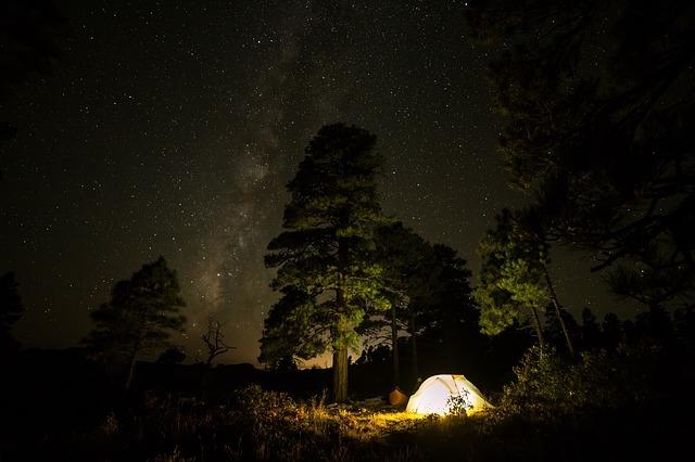 道志の森キャンプ場の全貌を特集!おすすめする理由や予約方法・料金は?