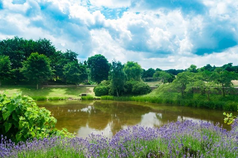 東京で美しい庭園を巡ろう!家族連れ・デートにもおすすめの場所は?
