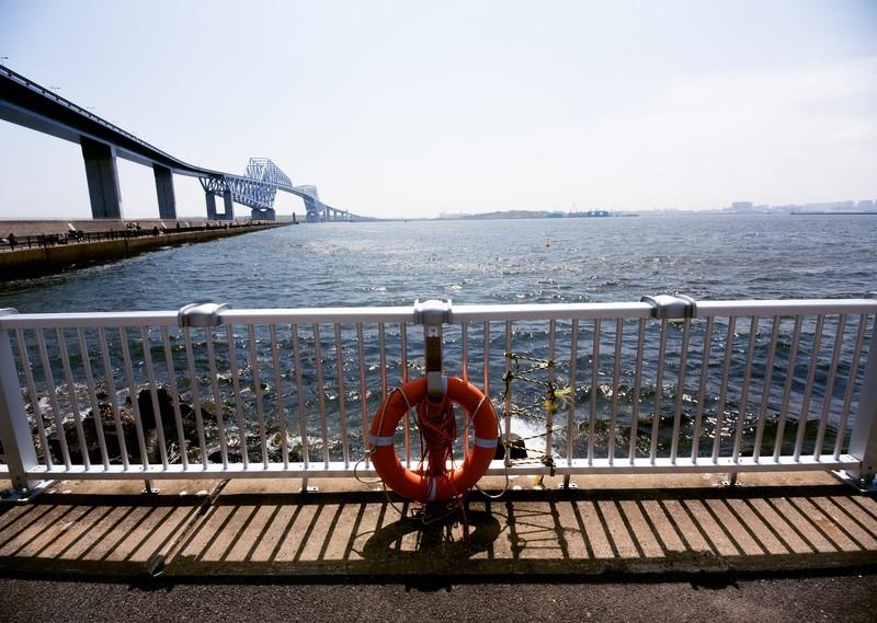 市原海釣り公園の便利情報まとめ!料金やおすすめのポイント・駐車場・混雑情報も