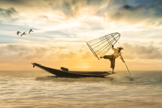 知っておきたい室戸岬の釣り場情報!自然豊かな海は青物や回遊魚の宝庫