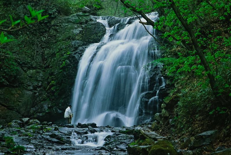 熊本でおすすめの美しい滝9選!絶景の自然の中を流れる姿はどれも圧巻