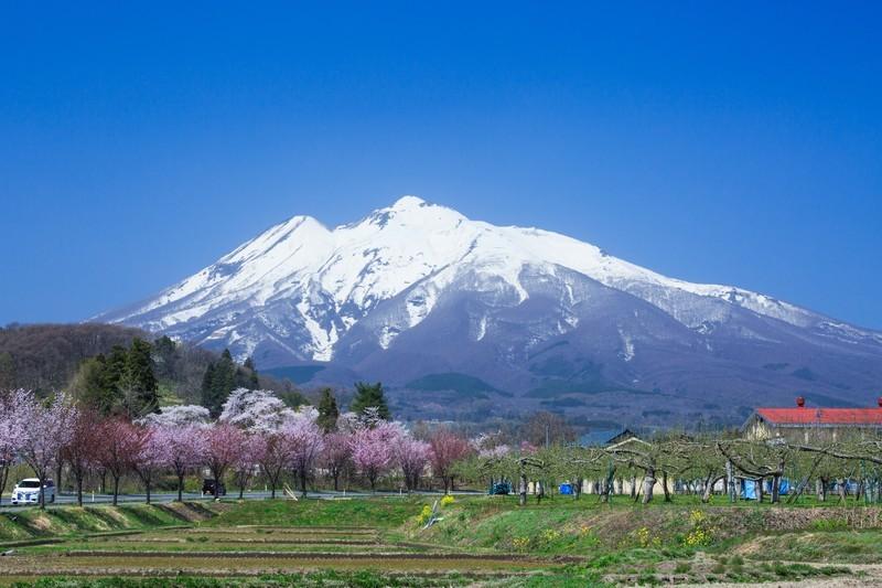弘前で人気のお土産を厳選!地元おすすめの絶品スイーツもご紹介