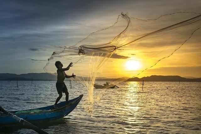 鹿島港周辺の釣り情報紹介!釣り場・ポイントや魚種・エサなどの情報も