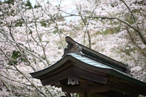 亀戸香取神社にお参りしよう!御朱印やお守り・アクセス方法などをご案内!